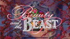 Beauty and the Beast(ybii)
