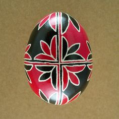 Pysanky Ukrainian Easter Egg Red Tulip Opposites Hand Decorated Chicken Egg