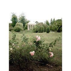 Garden at Versailles.