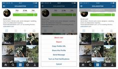 Flowerona Tips : How to get notified when your favourite Instagram users post photos | Flowerona