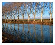 Le Canal du Midi à Ventenac-Minervois (Aude, France)