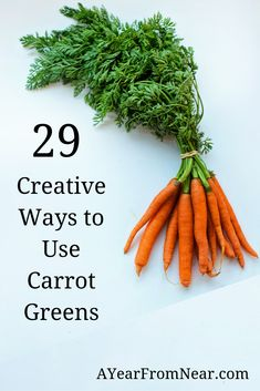 After finding out that carrot greens are edible, I had some trouble finding recipes and ideas to use them. I compiled 29 helpful carrot top recipes and information on what carrot green are, where to buy carrot greens, and how to preserve carrot greens! Best Vegetable Recipes, Vegetable Side Dishes, Vegetarian Recipes, Carrot Vegetable, Veggie Box, Vegetable Prep, Healthy Recipes, Eating Carrots, Cooked Carrots