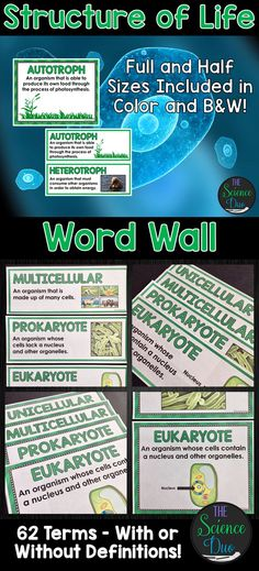 This Structure of Life Word Wall will allow you to display essential terms from your Life Science unit in a visually appealing way. Post these words on the board or wall when learning new content or reviewing important standards.