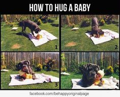 how to hug a baby.. I can only hope that whenever the day comes that Baya takes to our kids this well
