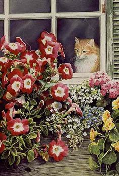 Cat in the window painting. Susan Bourdet - Fascination