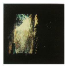 Andréi Tarkovsky, polaroids