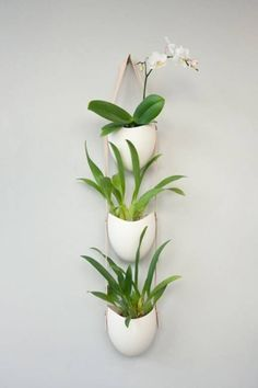 pretty ceramic plant pots - Google Search