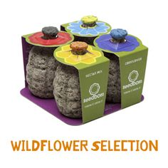 """Seedboms- """"weapons of choice for guerrilla gardeners in the war against weary wastelands"""""""