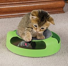 Cat Toy with Rotating Mouse Kitten Toy Spinning Mouse Rotates 360° with Scratch Pad Scratching Claw Care Mat * More info could be found at the image url.
