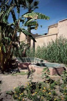 Design Tips for a House in the Desert