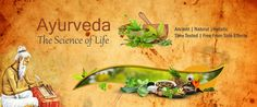 How ayurveda helps in diabetes. How to do ayurveda massage. Can ayurveda cure herpes. Jobs with ayurveda. IBS with ayurveda. Hindi with ayurveda. Ayurvedic Skin Care, Ayurvedic Herbs, Ayurvedic Diet, Ayurveda, Ayurvedic Therapy, Female Reproductive System, Natural Vitamin E, Bodily Functions