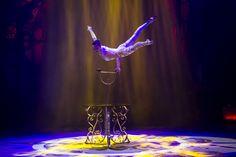 Teatro Circo Price espectáculo circo Navidad 2015