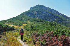 It Cast, Mountains, Nature, Travel, Food, Naturaleza, Viajes, Essen, Destinations