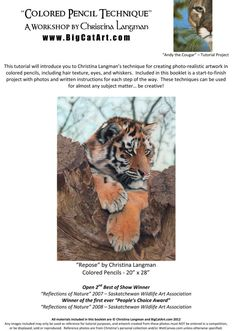 Colored Pencil Tutorial by Christina Langman  by BigCatArt on Etsy