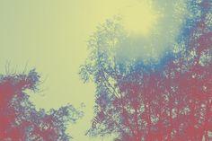 rainbows sunshine everywhere we go Elijah Johnson, Rainbows, Sunshine, Diagram, Map, World, Abstract, Artwork, Painting