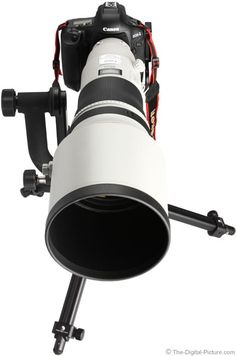 Canon EF 400mm f/2.8 L IS II USM Lens Review - Gimme Gimme Gimme