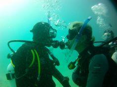 DIVE OCEANS Blog: ダイブマスターコース始まります。