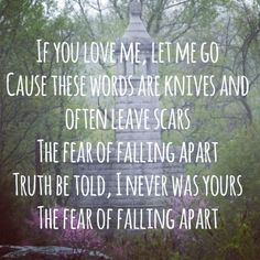panic at the disco lyrics this is gospel - Google Search