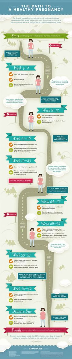 Stages of Pregnancy Infographic : info Week by Week about doctors meetings, eating plans & more