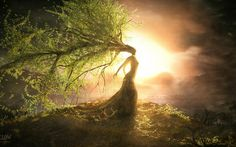 Picture Art, tree, willow, girl, crown, steven donnet, leaves, sunset