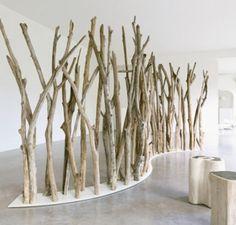 Tilanjakaja puut