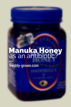 Why I Chose Manuka Honey Over  Antibiotics to Treat My 4-Year-Old