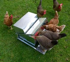GrandpasFeeders.com - waterproof, rodent proof local bird population proof! Saves on Feed! Worth EVERY penny. We have 30 chickens who feed from this one Large Feeder. We have gone from 100-150 lbs of feed a week (depending on the weather) to 60-80 lbs! We added a strong magnet to the side arm (purchase from local farm store) to add weight (as suggested) so our bantams (weigh under 2 lbs) can use the feeder-they have no problems open it by themselves. Saving my pennies to get a 2nd feeder!
