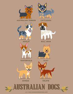 日本だったら秋田犬や柴犬、アメリカならボストンテリア、スイスはバーニーズマウンテンドッグ…と、地域によって見た目や性格も大きく異なるのが犬の魅力の一つ。 ...