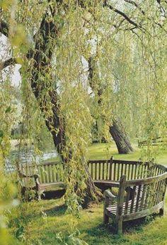 Construisez un banc autour des arbres et entrez en communion avec la nature. Le tout, dans un confort absolu !