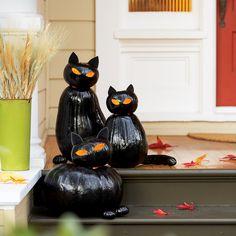 Make Black Cat Pumpkins - Sunset