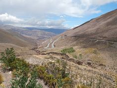 Caminhos do Sul da América