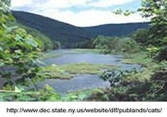 Catskill Preserve   New York Motorcycle Roads and Rides   MotorcycleRoads.com