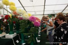 The National Dahlia Society's Annual Show is held in the National Dahlia Society…