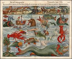 When much of the world had yet to be mapped, many illustrations of the world's still mysterious oceans featured the weird and wonderful creatures that supposedly lived there. This chart showing sea monsters dates from 1550.