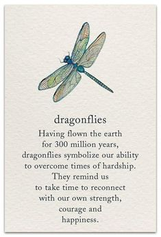 Dragonfly - Printed with soy ink on recycled paperItem # 1214 Categories: , , Tag: Little RemindersMeanings of LifePassagesPretty WordsAll CardsAnniv Motivacional Quotes, Words Quotes, Wise Words, Sayings, Smart Quotes, Soul Quotes, Happy Words, Dragonfly Quotes, Butterfly Quotes