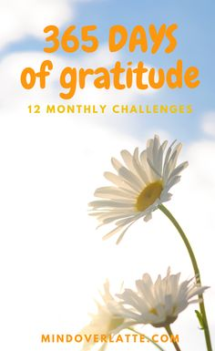 You can't be stressed and grateful at the same time! So here is a full year of fun and engaging monthly challenges that are bound to make you fell happier and more appreciative of everything and everyone around you.