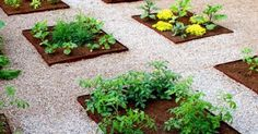 25 DIY Garden Projects Anyone Can Make – Craftionary