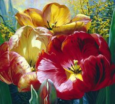 TULIP TRIO by Elizabeth Horning