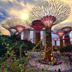 Welcome to Singapore's awe-inspiring 101 hectares garden. Set in the heart of the city, this green space comprises three waterfront gardens – Bay South, Bay East and Bay Central.
