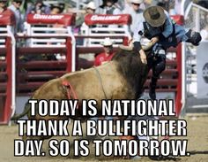 National bullfighter day