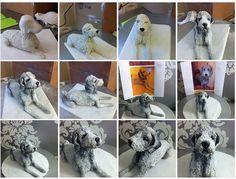 Dog cake step by step https://www.facebook.com/media/set/?set=a.10151480369931152.1073741829.58556641151&type=1