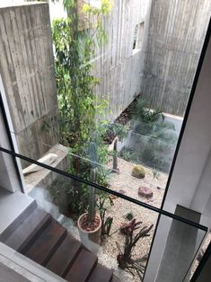 Le studio israélien Paritzki & Liani Architects a intégré un eucalyptus existant, situé dans la rue et en bordure de la parcelle, dans la conception de la maison en créant une ouverture dans sa façade. D'où le nom du projet : Eucalyptus House. La maison est située dans la dernière section d'une petite rue à quelques pas du flux piétonnier de la rue Shabazi, une rue bondée avec les magasins et les bars de Neve Tzedek, quartier branché et artistique de Tel Aviv. Du côté du trottoir, la…