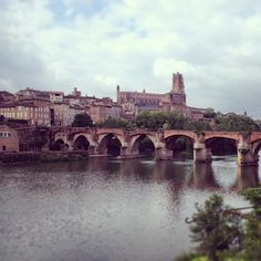See 185 photos and 5 tips from 1266 visitors to Albi. Touring, Muse, Cycling, Beautiful Places, Magic, France, Travel, Biking, Viajes