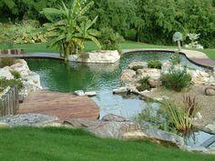 Exemples de bassins naturels pour la baignade ou pour paysager votre jardin - Aquatiss