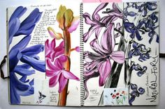 I like the colours of the flowers and how close up and lifelike they are - A Level Art Sketchbook, Sketchbook Layout, Textiles Sketchbook, Artist Sketchbook, Sketchbook Pages, Art Journal Pages, Sketchbook Ideas, Journal Ideas, Inspiration Art