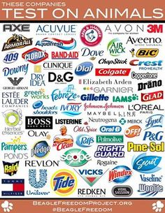 Please do not support animal suffering - buy cruelty-free products