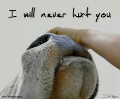 And I will never pay the industry to hurt you. <3