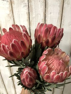 King Protea Protea Art, Protea Flower, Flower Garlands, Flower Decorations, Beaded Flowers, Paper Flowers, South African Flowers, Fresh Flower Delivery, Flower Power