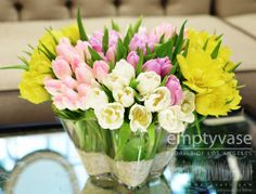 """Sorbet Sunset-- Fresh and simple, total of 70-75 stems of butter yellow tulips, pink tulips and white tulips all imported from Holland are captured in an 8"""" w x 6"""" h glass vase with natural sand as the element at the base of the vase. Perfect for spring!"""