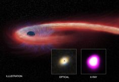 The longest-lasting tidal disruption event from a distant supermassive black hole has now surpassed a decade in duration. Image credit: X-ray: NASA/CXC/UNH/D.Lin et al, Optical: CFHT, Illustration: NASA/CXC/M. Cosmos, Hubble Space Telescope, Space And Astronomy, Astronomy Facts, Solar Mass, University Of New Hampshire, Giant Star, Physique, Light Year